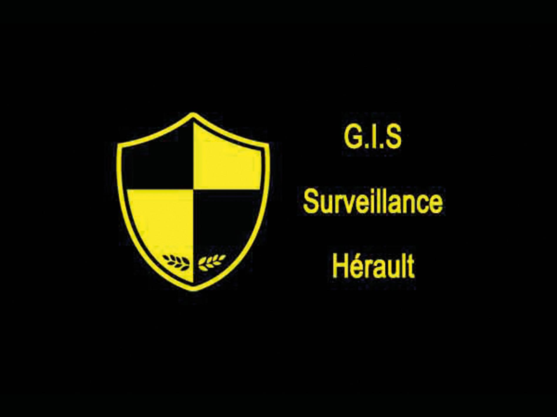 gis-surveillance