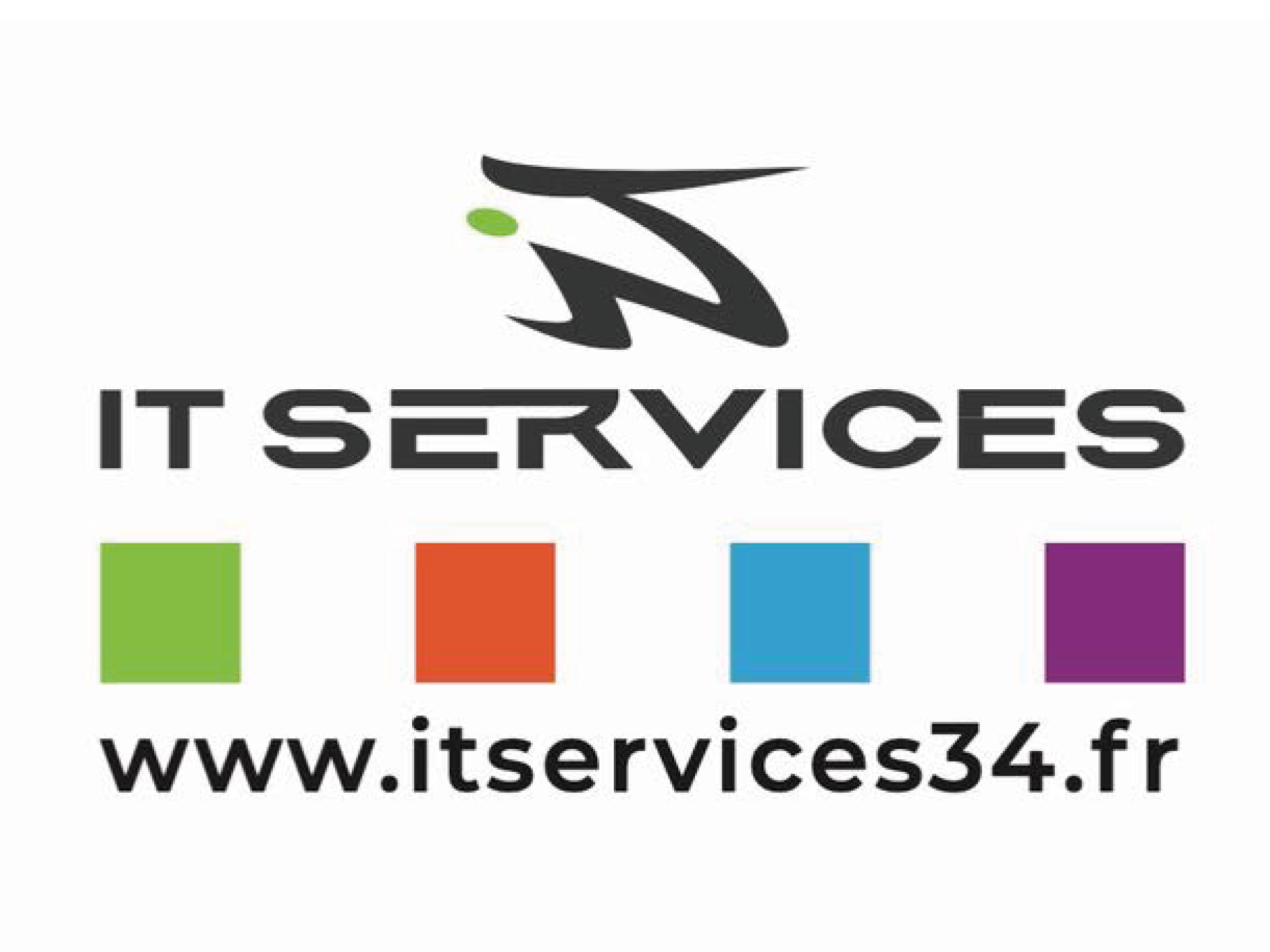 nouveau logo IT SERVICES-1